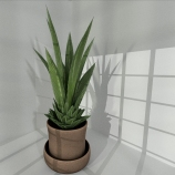Low-Poly Indoor plant by DennisH2010 2