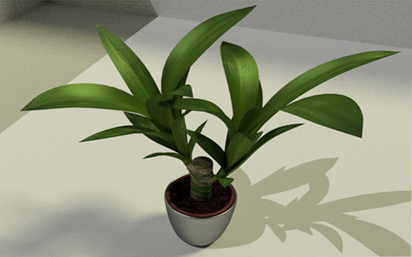 indoor plant 2 by DennisH2010