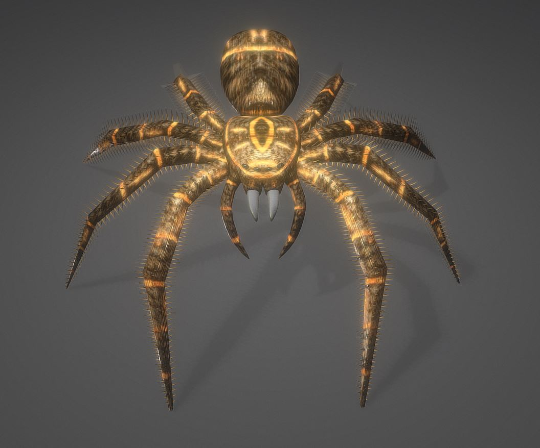 Spider Animations Buy Royalty Free 3d Model By 3dhaupt