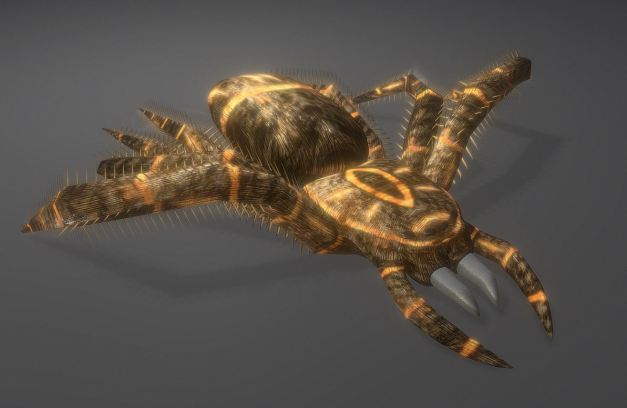 3d-model-animals-insect-spider-game-ready-low-poly-rigged-7
