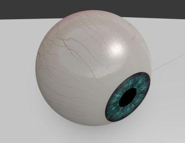 3D Eyeball