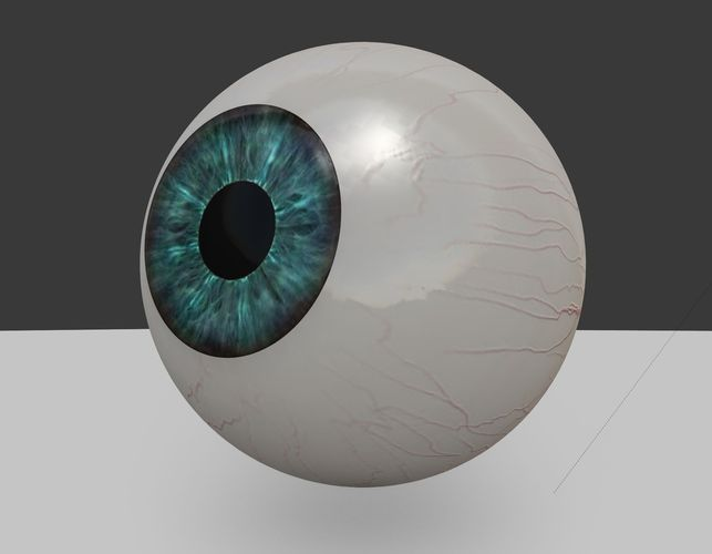 3d-model-eye-ball-3d-model-low-poly-animated-low-poly-anatomy-8