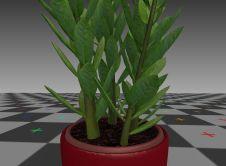 Indoor Pot Plant Rigged 3d-Model