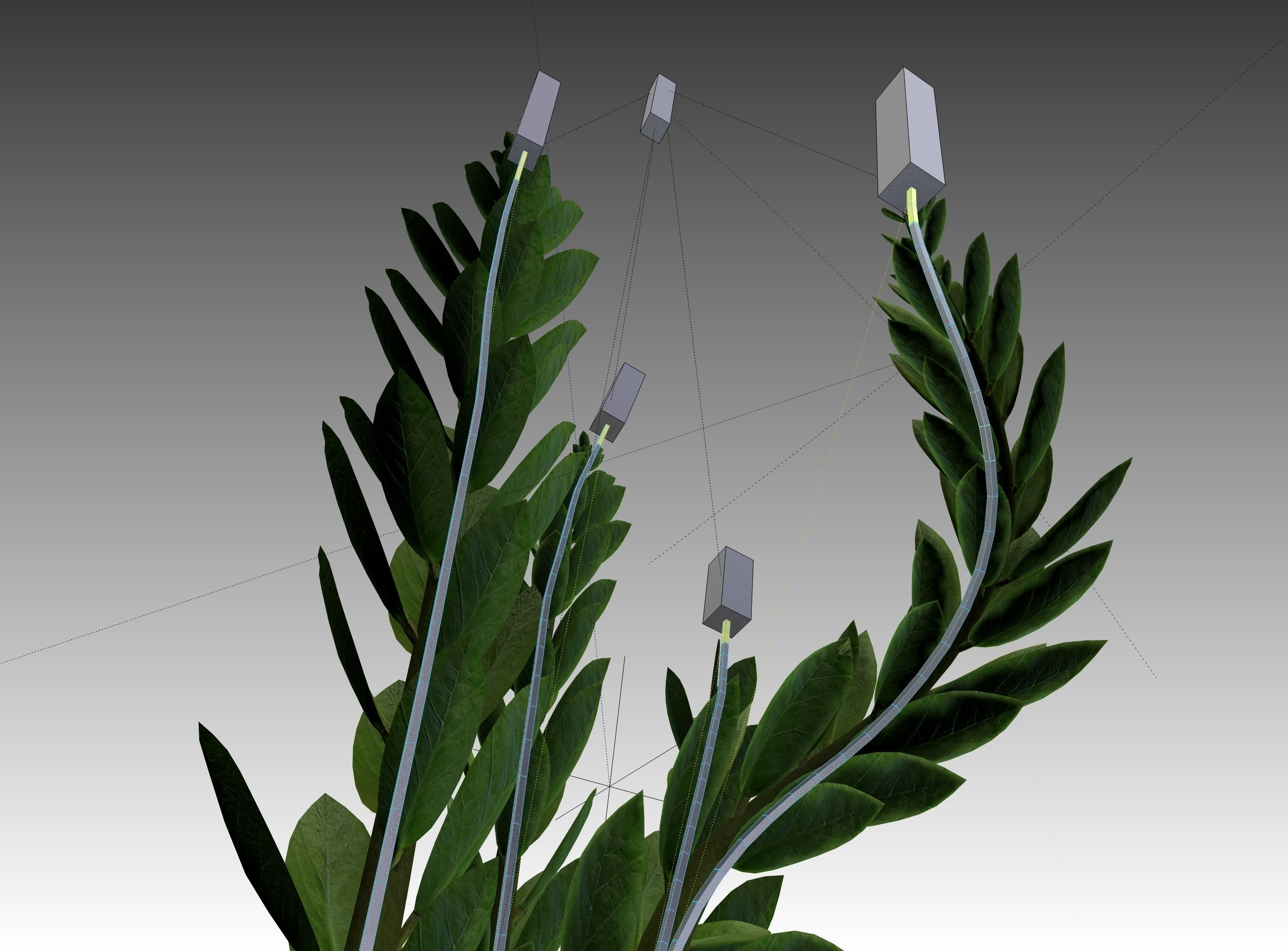 3d-model-indoor-plant-rigged-low-poly-jpg-15