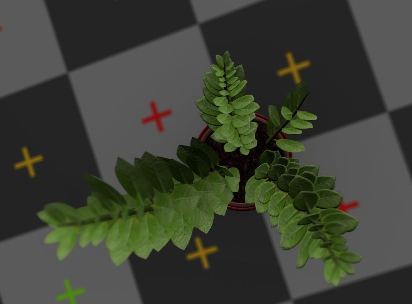 3d-model-indoor-plant-rigged-low-poly-jpg-21