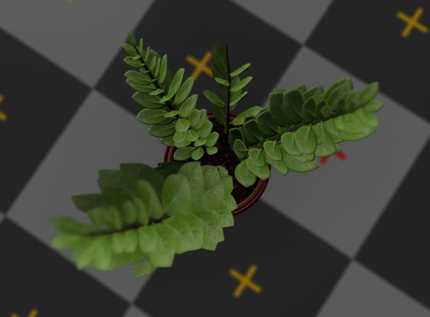 3d-model-indoor-plant-rigged-low-poly-jpg-23