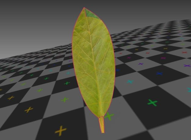 3d-model-indoor-plant-rigged-low-poly-jpg-25