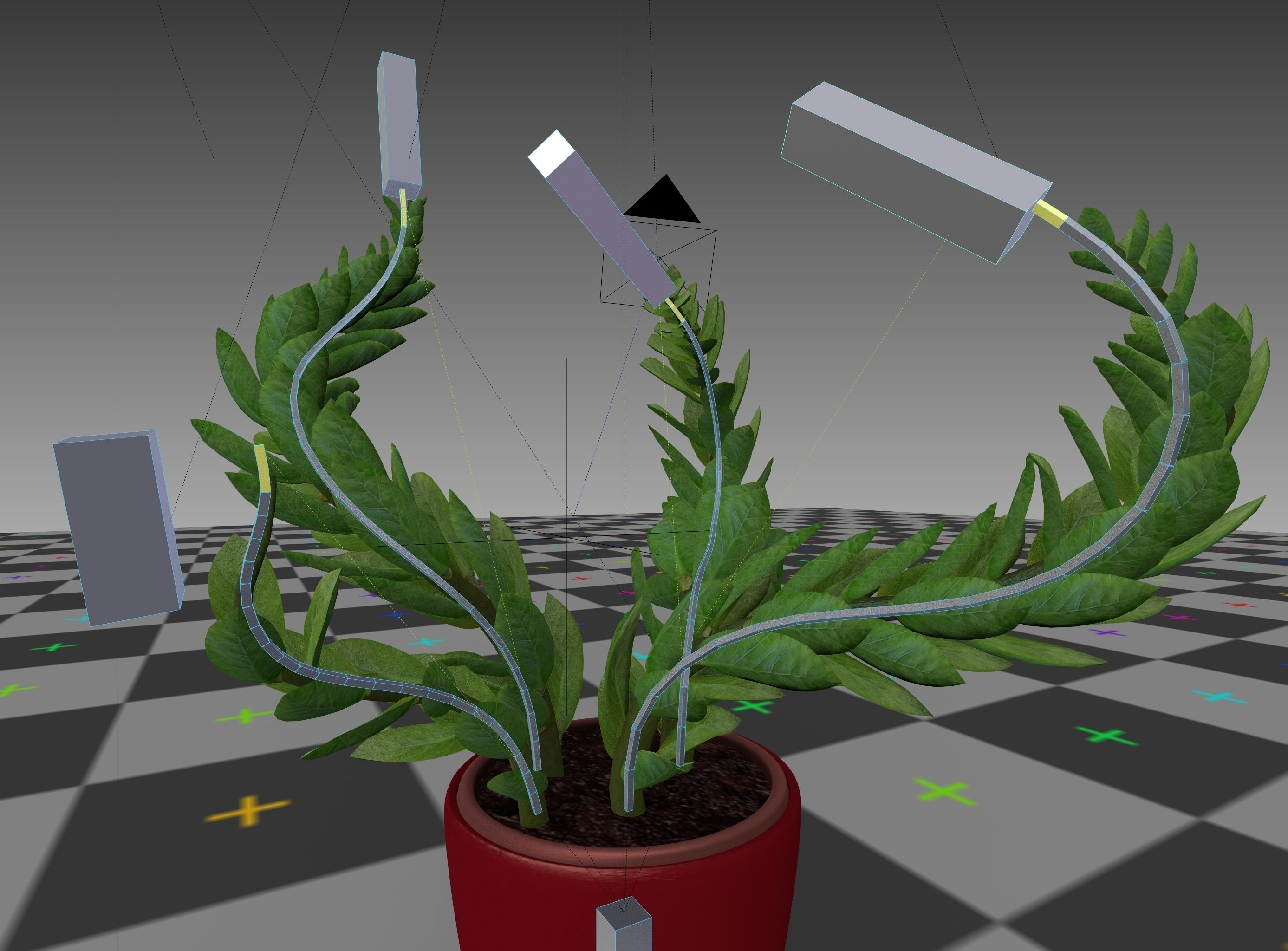 3d-model-indoor-plant-rigged-low-poly-jpg-26