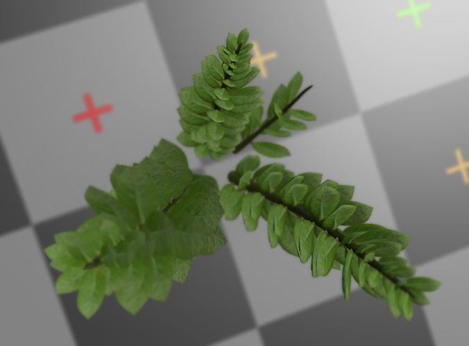 3d-model-indoor-plant-rigged-low-poly-jpg-8