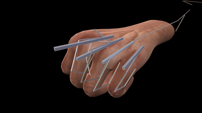 Animated 3d Hands