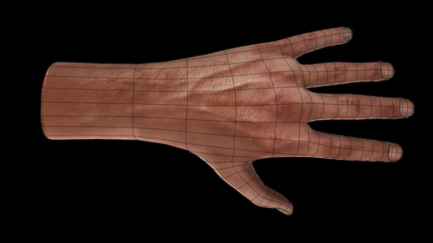 Rigged and Animated 3d Hand