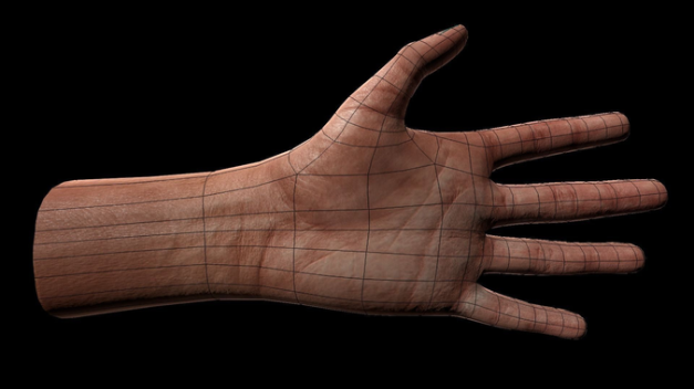 Animated 3d Hand