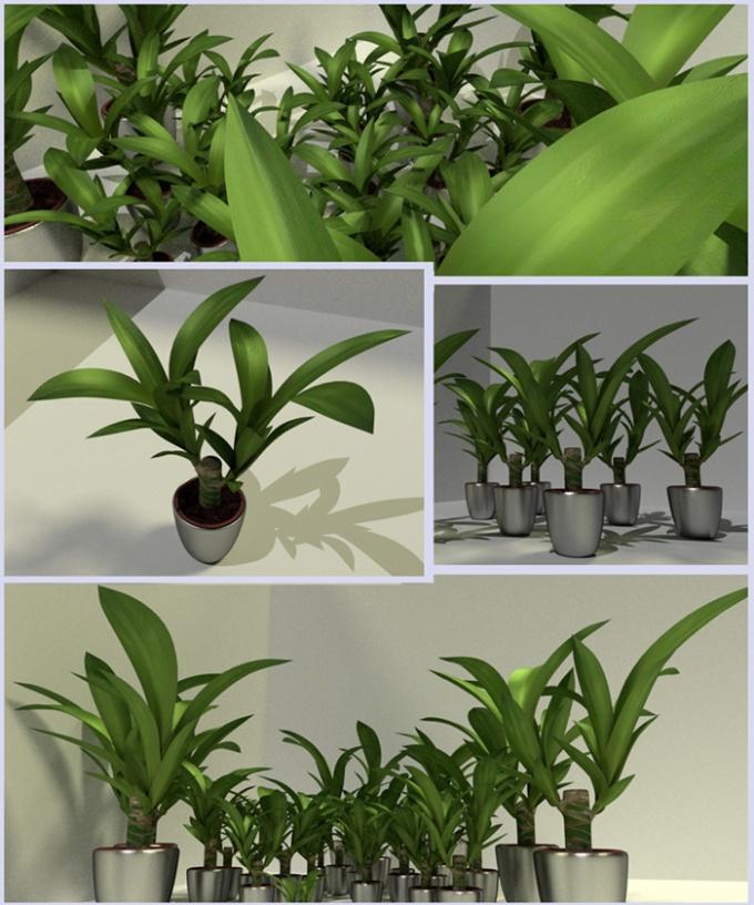 Indoor Pot Plant 2 Free 3D Model - .3ds .obj .dae .blend .fbx .mtl ...