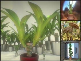 3d-models-plants