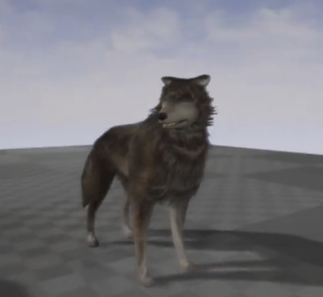 Wolf Animated
