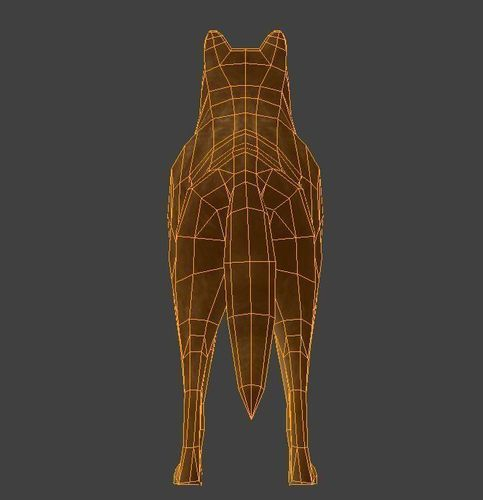 3d Wolf Animated