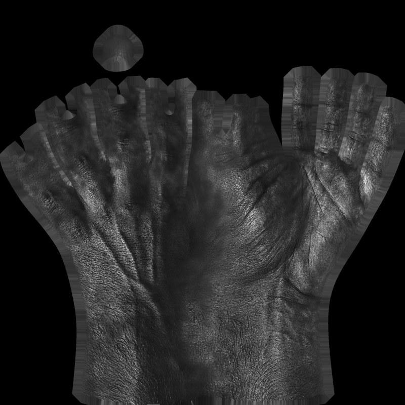 Hand texture spec map