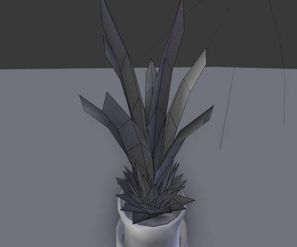 Indoor Pot Plant 1