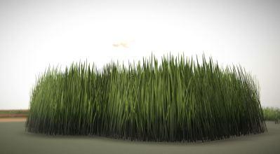 Grass, Blumen, Steine und Pilze - Demo (3)
