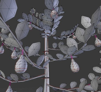 Small Pear Trees - Four Seasons (37)