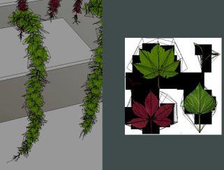 Vines - Climbing Plants (Done) (4)
