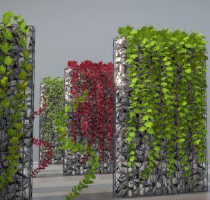 Vines - Climbing Plants (Done) (5)