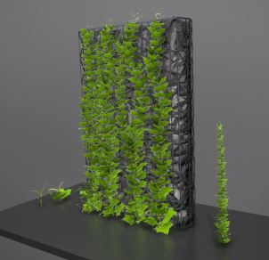 Vines - Climbing Plants (WIP-2) (1)