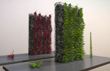 Vines - Climbing Plants (WIP-3) (7)