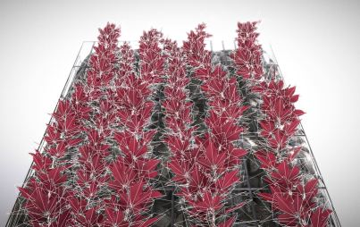 Vines - Climbing Plants (WIP-4) (7)